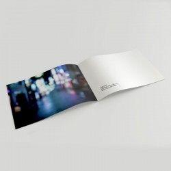 Catálogo grapa horizontal